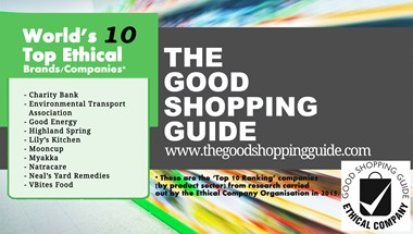 For the second year running Good Energy has  made The Good Shopping Guide's list of the World's 10 most ethical brands.