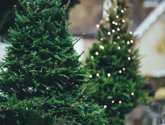 How To Have An Eco Friendly Christmas Good Energy