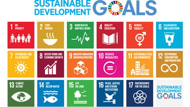 Our founder and CEO, Juliet Davenport argues the Sustainable Development Goals must be more than a 'box-ticking exercise'
