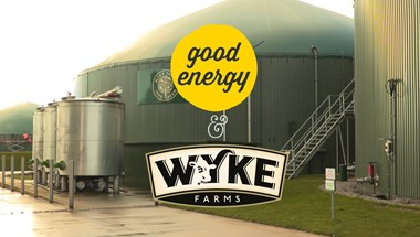 We catch up with Wyke Farms - one of the 1,400 renewable generators that we source our electricity from.