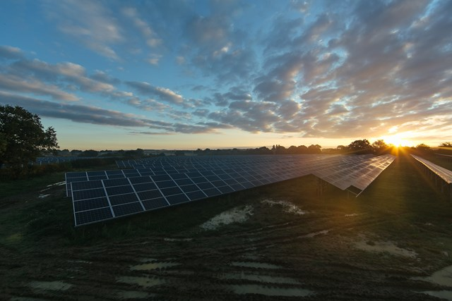 Solar farm at sunset
